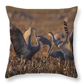 Kissing Sandhills Throw Pillow