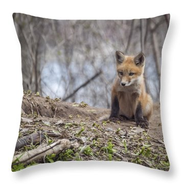 Kit Fox 2011-1 Throw Pillow