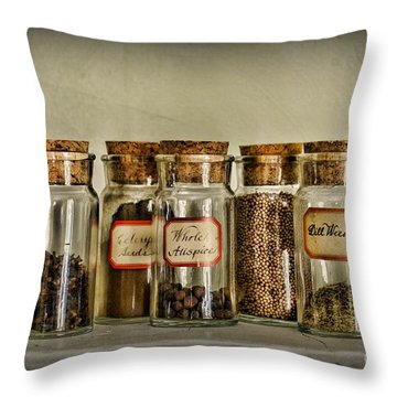 Kitchen Spices Colonial Era Throw Pillow by Paul Ward