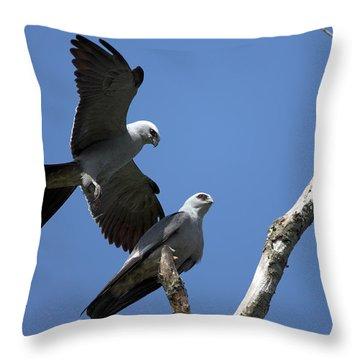 Kites In Love Throw Pillow