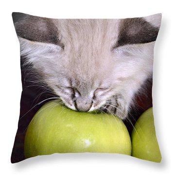 Kitten And An Apple Throw Pillow by Susan Leggett