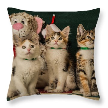 Kitten Cookies Throw Pillow by Janis Knight