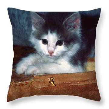 Throw Pillow featuring the photograph Kitten In Slipper by Sally Weigand