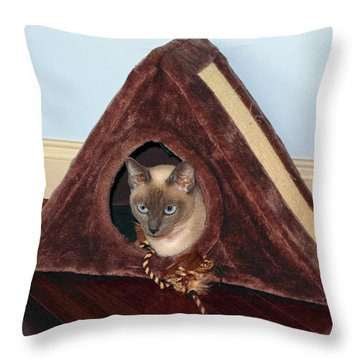 Kitty A-frame Throw Pillow by Sally Weigand