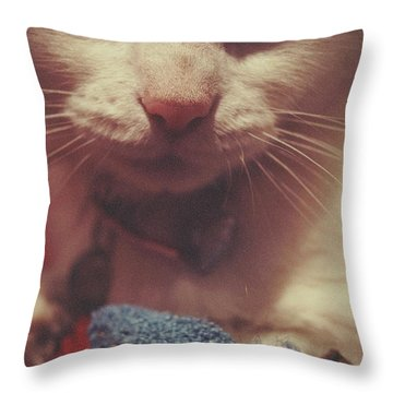 Throw Pillow featuring the photograph Kitty And Mousie by Cassandra Buckley