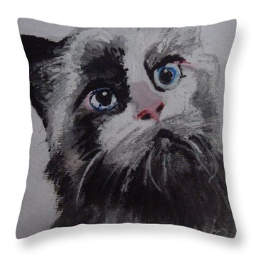 Kitty Cat Throw Pillow by Carole Robins
