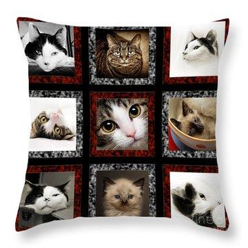 Kitty Cat Tic Tac Toe Throw Pillow
