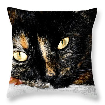 Kitty Face Throw Pillow