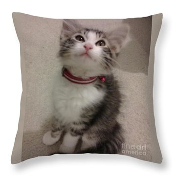 Kitty - Forgotten Innocence Throw Pillow