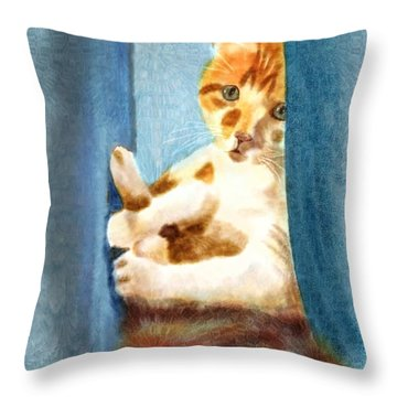 Kitty In A Corner Throw Pillow