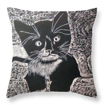 Kitty In Blanket Throw Pillow