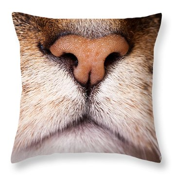 Kitty Nose  Throw Pillow by Sharon Dominick
