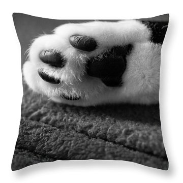 Kitty Paw Close Up Throw Pillow by Sharon Dominick