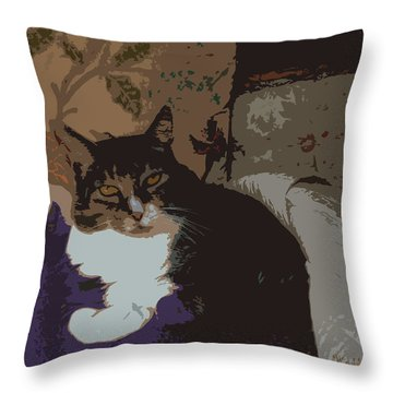 Kitty Queen Throw Pillow