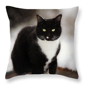 Kitty Snow Play Throw Pillow