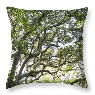 Knarly Oak Throw Pillow by Ellen Meakin