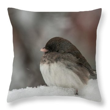 Throw Pillow featuring the photograph Knee Deep In Snow by Lara Ellis