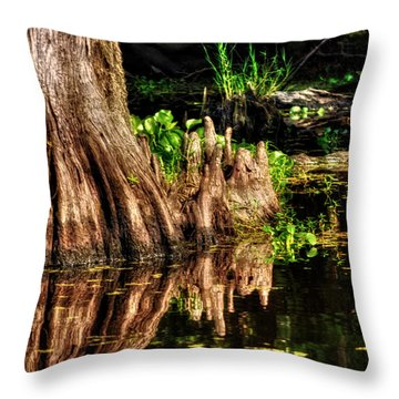 Knees Deep In A Louisiana Bayou Throw Pillow