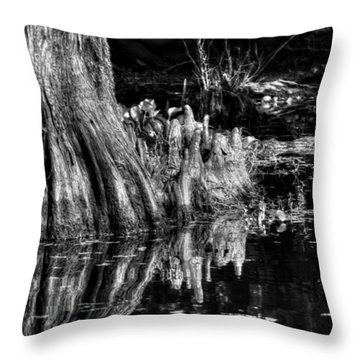Knees Deep In A Louisiana Bayou In Black And White Throw Pillow