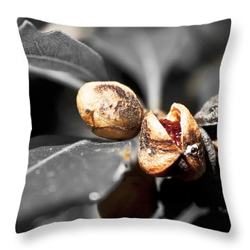 Throw Pillow featuring the photograph Knew Seeds Of Complentation by Miroslava Jurcik