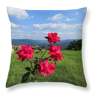 Knock Out Rose Throw Pillow