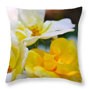 Knockout Throw Pillow by Cathy Dee Janes