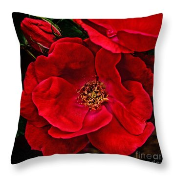 Knockout Red Throw Pillow