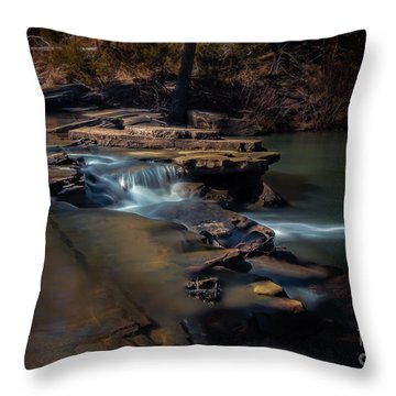 Knoppers Ford II Throw Pillow