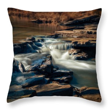 Knoppers Ford Throw Pillow