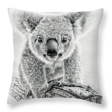 Koala Oxley Twinkles Throw Pillow