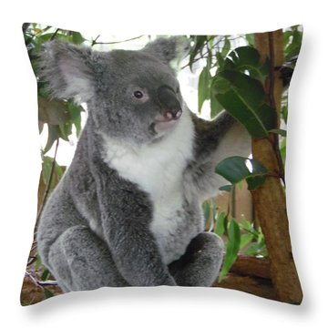 Koala Profile Throw Pillow