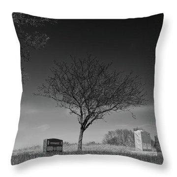 Kohanek Throw Pillow by Guy Whiteley