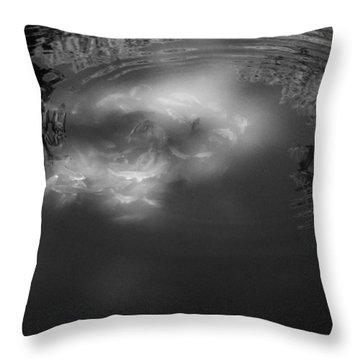 Koi In The Sunlight Throw Pillow