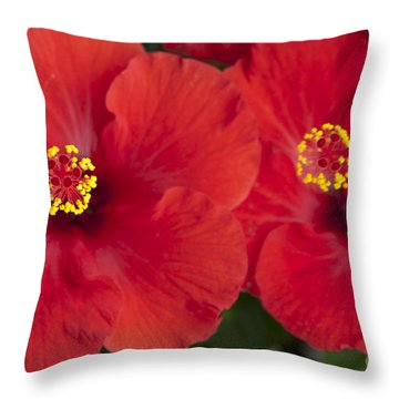 Kokio Ulaula - Tropical Red Hibiscus Throw Pillow by Sharon Mau