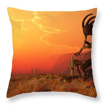 Southwest Home Decor