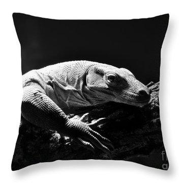 Throw Pillow featuring the photograph Komodo Dragon by Lisa L Silva