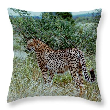 Krugger Cheetah Throw Pillow
