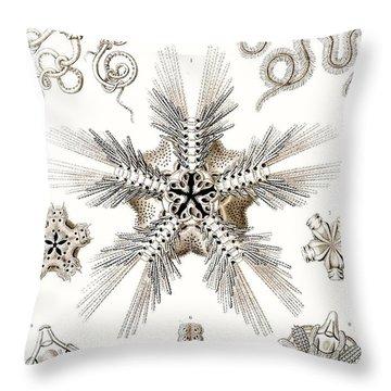 Kunstformen Der Natur Throw Pillow by Ernst Haeckel
