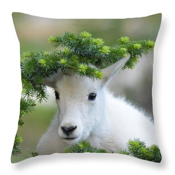 Kurious Kid Throw Pillow
