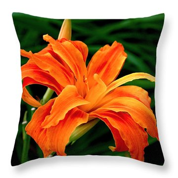 Kwanso Lily Throw Pillow by Rona Black