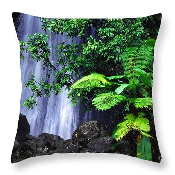 La Coca Falls Throw Pillow by Thomas R Fletcher