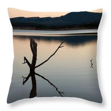 La Estanca-perdiguero - 2 Throw Pillow by RicardMN Photography