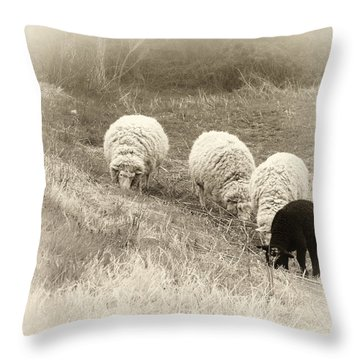 La Famiglia Throw Pillow by Darlene Kwiatkowski