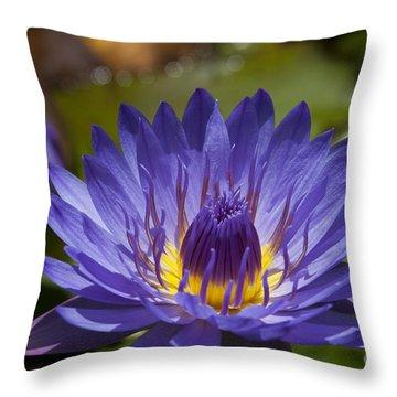 La Fleur De Lotus - Star Of Zanzibar Tropical Water Lily Throw Pillow by Sharon Mau