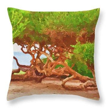 La Jolla California Throw Pillow by Angela A Stanton