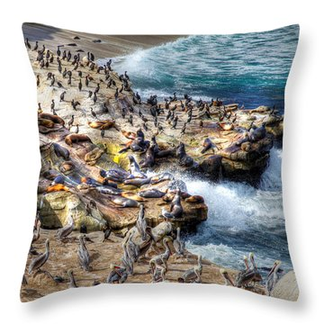 La Jolla Cove Wildlife Throw Pillow