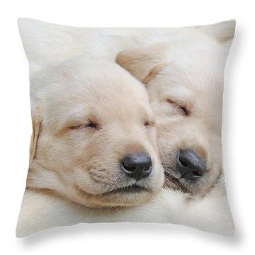 Labrador Retriever Puppies Sleeping  Throw Pillow by Jennie Marie Schell