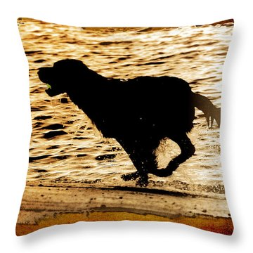 Throw Pillow featuring the photograph Labrador Silhouette by Eleanor Abramson