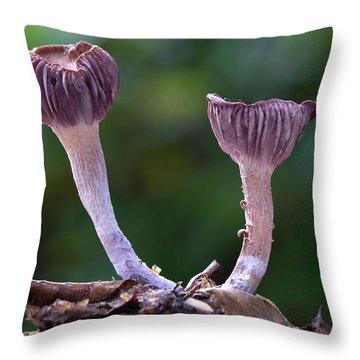 Saprophytic Throw Pillows