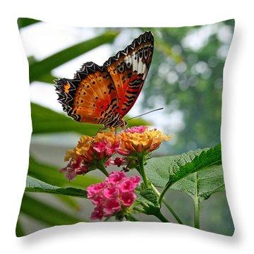 Lacewing Butterfly Throw Pillow by Karen Adams